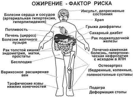 влияние ожирения на организм