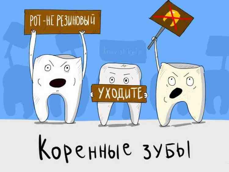 коренные зубы юмор