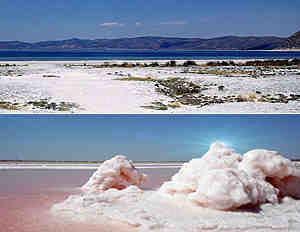 сода в озере