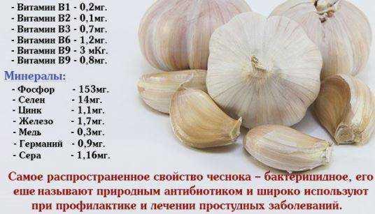 состав чеснока витамины