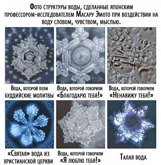 талая вода под микроскопом